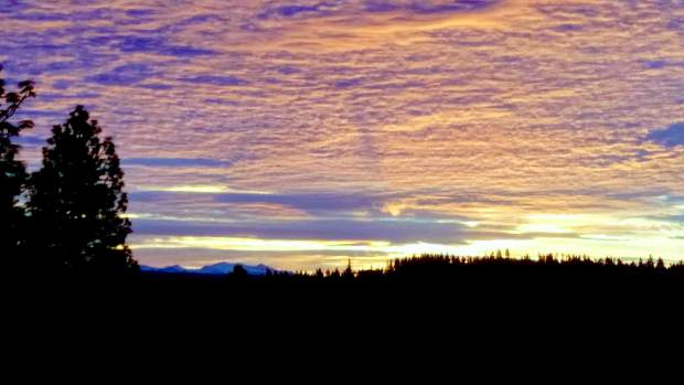 Photo of the horizon from the back porch of a home on Birch Meadows Circle in Grass Valley.