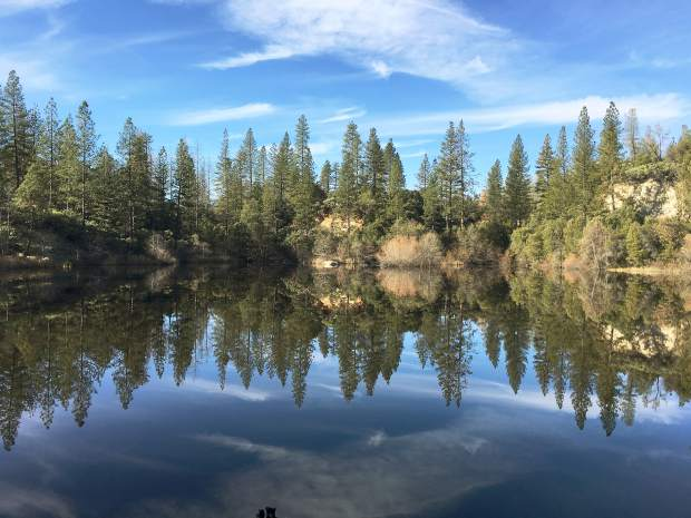 Photo taken Wednesday of Hirschman's Pond by a visitor from Tacoma, Wash.