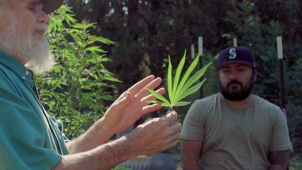 Creators of the documentary didn't set out to focus on marijuana, but the newly legalized crop ended up making the cut.