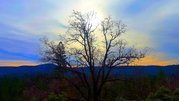Morning light from Coyote Hill in Nevada City.