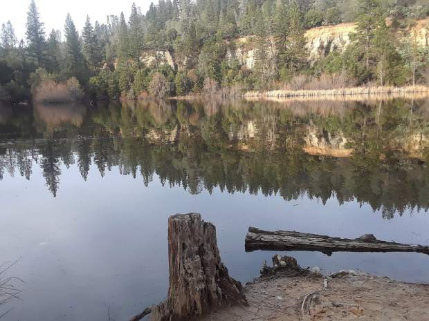 A shot of Hirschman's Pond in Nevada City Wednesday.