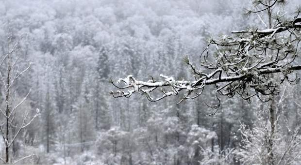 Much of Nevada County lived up to its name today when folks awoke to a wintry wonderland.