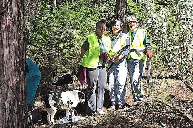Thirty members of Gold County Trails Council performing maintenance work on local trails in the Tahoe National Forest. They maintain the non-motorized, multi-use trails that are open to hikers, horses and bicyclists.
