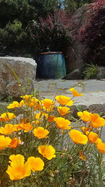 A fountain to honor the Chinese pioneers of Nevada County on commercial Street in Nevada City.