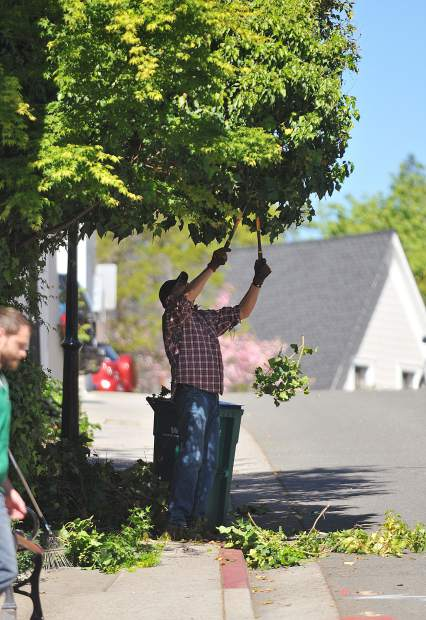 Roughly 50 volunteers took to the streets of downtown Nevada City for the annual spring cleanup event, which included tree trimming.