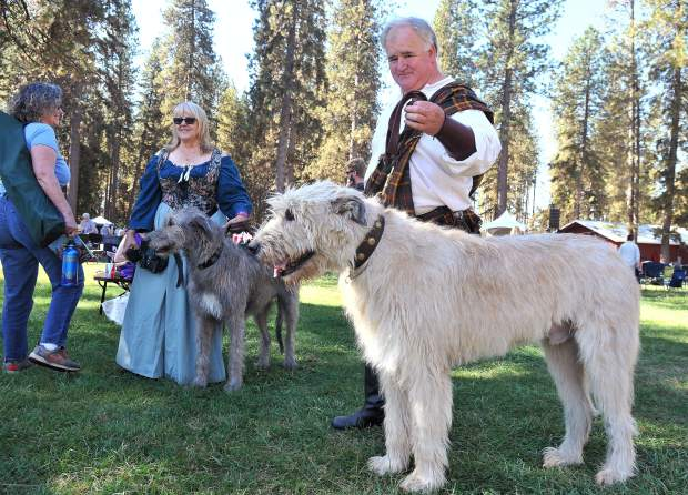 Sue Nelson (left) and Jim Williams stand with their Irish Wolfhound dogs Phoebe and Ashford, who brought much attention from festival attendees.