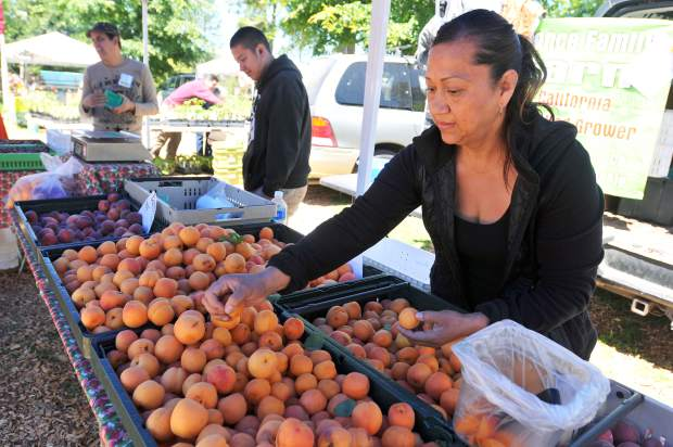 Delhi's Leticia Monzon from Ponce Family Farms, bags a selection of sweet apricots during Satruday's market at the North Star House.