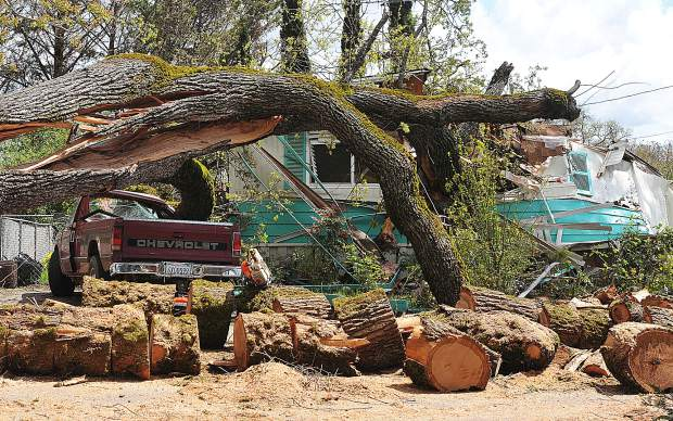 The Magliocca's mobile home and only vehicle sit crushed by an old growth oak tree estimated at 500 years old on April 18 2017, a day after the tree came down at Creekside Village in Penn Valley. Residents say they warned management of the tree before it came down.