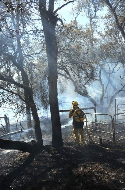 A Cal Fire firefighter assess the charred landscape along Dove Road while fighting a 4- to 6-acre vegetation fire.
