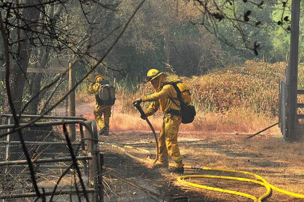 Cal Fire firefighters lay progressive hose around a flank of the Dove Fire Wednesday afternoon, protecting nearby homes from the flames.