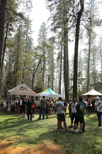 It was a perfect day under the pines of the Nevada County Fairgrounds during the 2018 Sierra BrewFest to benefit Music in the Mountains.