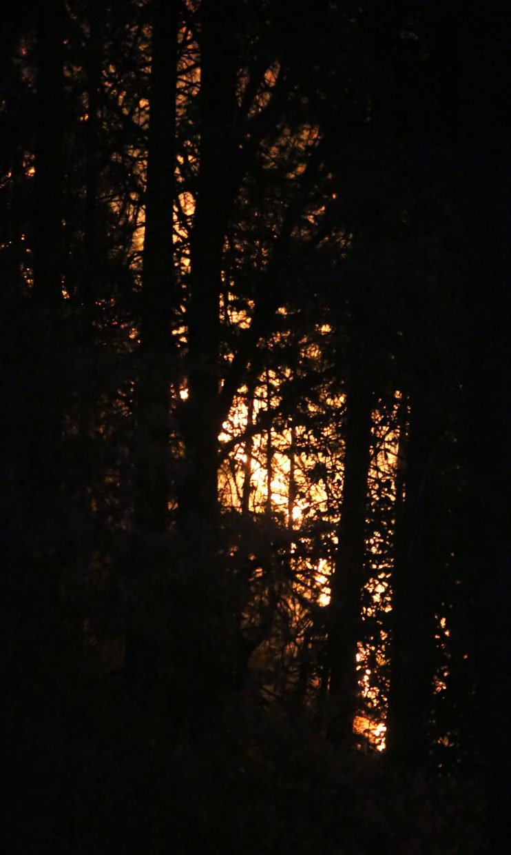 10 to 20 foot flames could be seen through the forest across from the North Star Mining Museum before Grass Valley firefighters got a handle of the vegetation fire coined the Fair Incident, Friday night in Grass Valley.