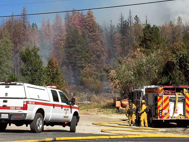Firefighting crews respond to a fire east of South Auburn Street in Grass Valley that quickly consumed dead and dying trees infested by bark beetles.