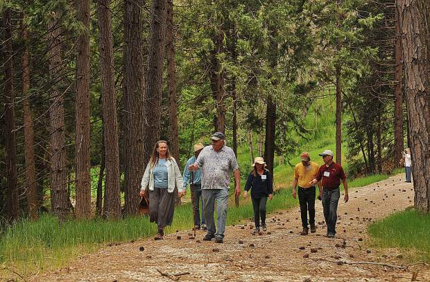 Grass Valley Mayor Howard Levine leads a group of hikers along the recently opened Wolf Creek Trail Saturday.