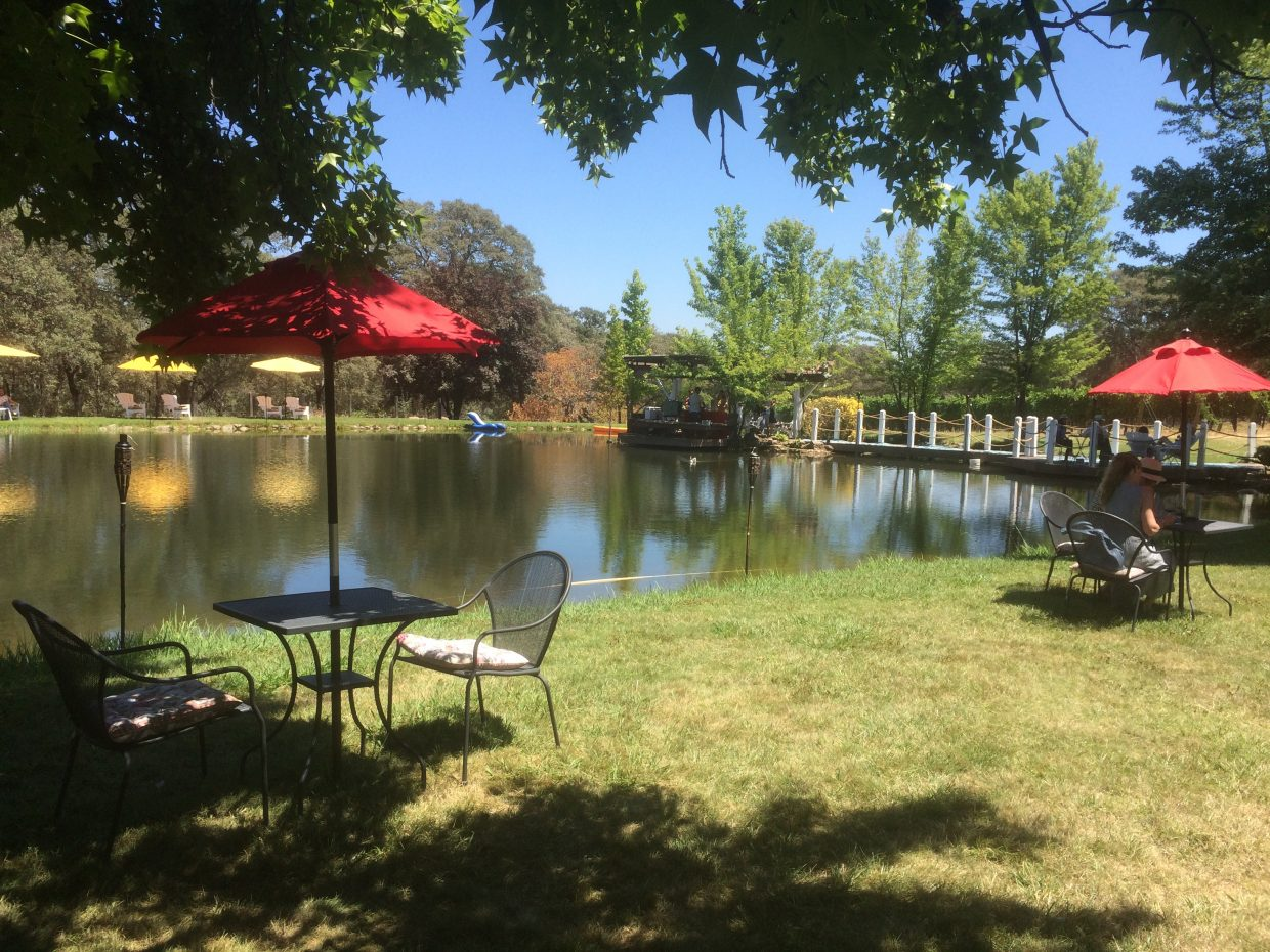 Vina Castellano is a gorgeous spot to stop and enjoy a glass of wine and a bite in the shade.
