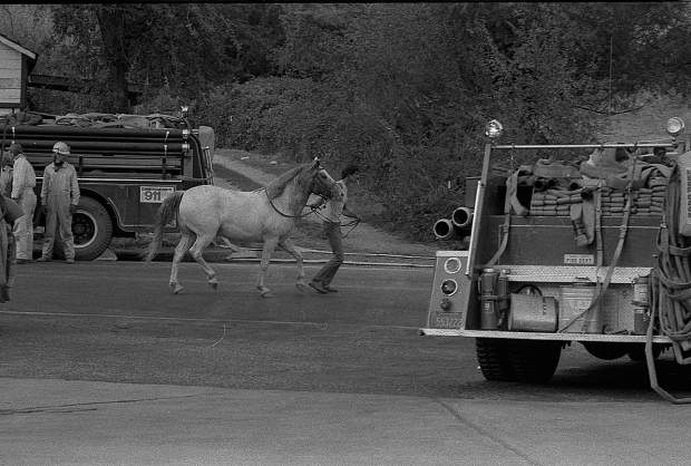 A resident evacuates a horse from property in Rough and Ready during the 49er Fire.