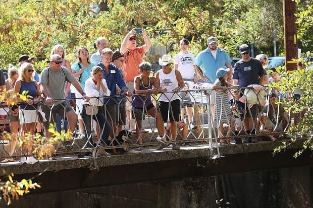 Duck Race spectators stand above the Nevada Street Bridge over looking Deer Creek, to get a good view of the 27th annual Gold Country Duck Race.
