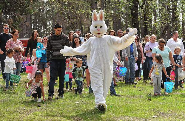 The Easter bunny arrived right on time, shown leading a group of Easter egg hunters out to the meadow of Orchard Springs Campground in Chicago Park where the Nevada Irrigation District held its 11th annual event. The free hunt was just one of nine regional Easter egg hunts available to the public. Attendees at Orchard Springs Campground touted the event's smaller crowds and campground setting.