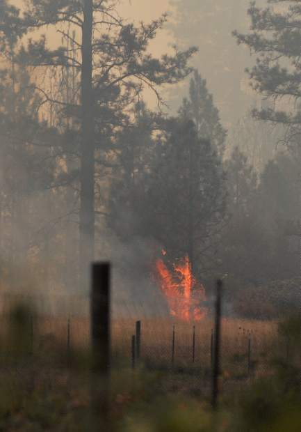 A spot fire burns in a meadow off of Bitney Springs Road as the Lobo Fire advances to the east.