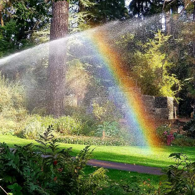 Nevada County Captures: Rainbows In The Fall