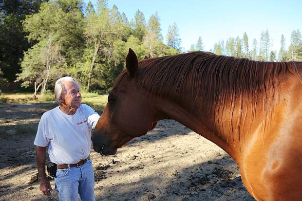 Every morning for more than 30 years, Former Diamond F Ranch owner Dave Ferguson woke up to feed the horses of his ranch. The Fergusons have sold the horse racing and breeding ranch to new owner Justin Dunne and now need to adopt out the remaining horses.