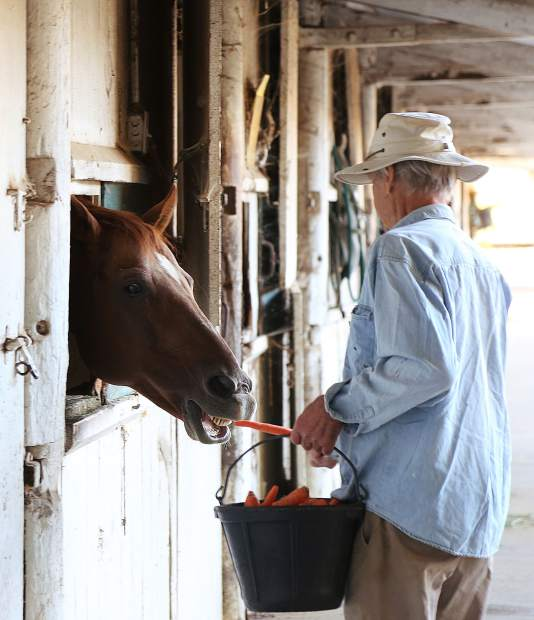 Neighbor Jerry Czember helps feed the horses of the Diamond F Ranch some mornings with a bucket full of carrots.