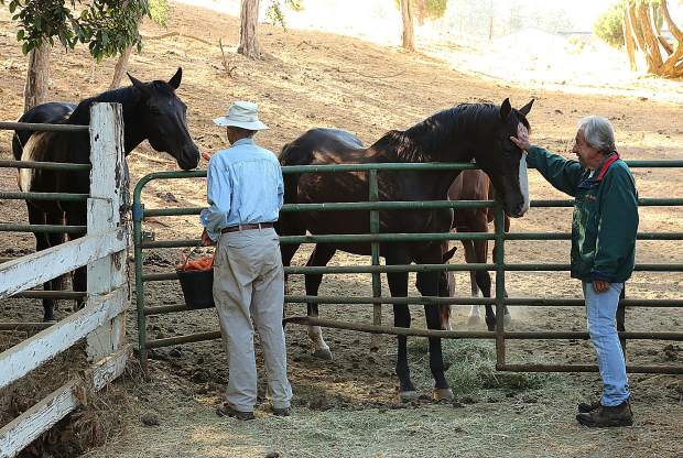 Neighbor Jerry Czember (left), helps former Diamond F Ranch owner Dave Ferguson feed the horses before the property was sold earlier this year.