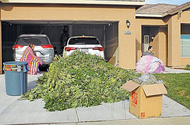 Feds charge Chinese nationals busted in Yuba County for