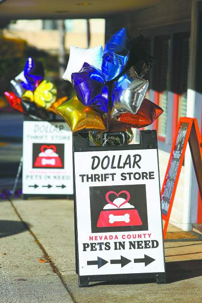 Balloons and signage welcome folks into the Nevada County Pets in Need Dollar Thrift Store, now open off of Colfax Avenue. Their previous space, behind the current address, has been left behind for their expanded location.