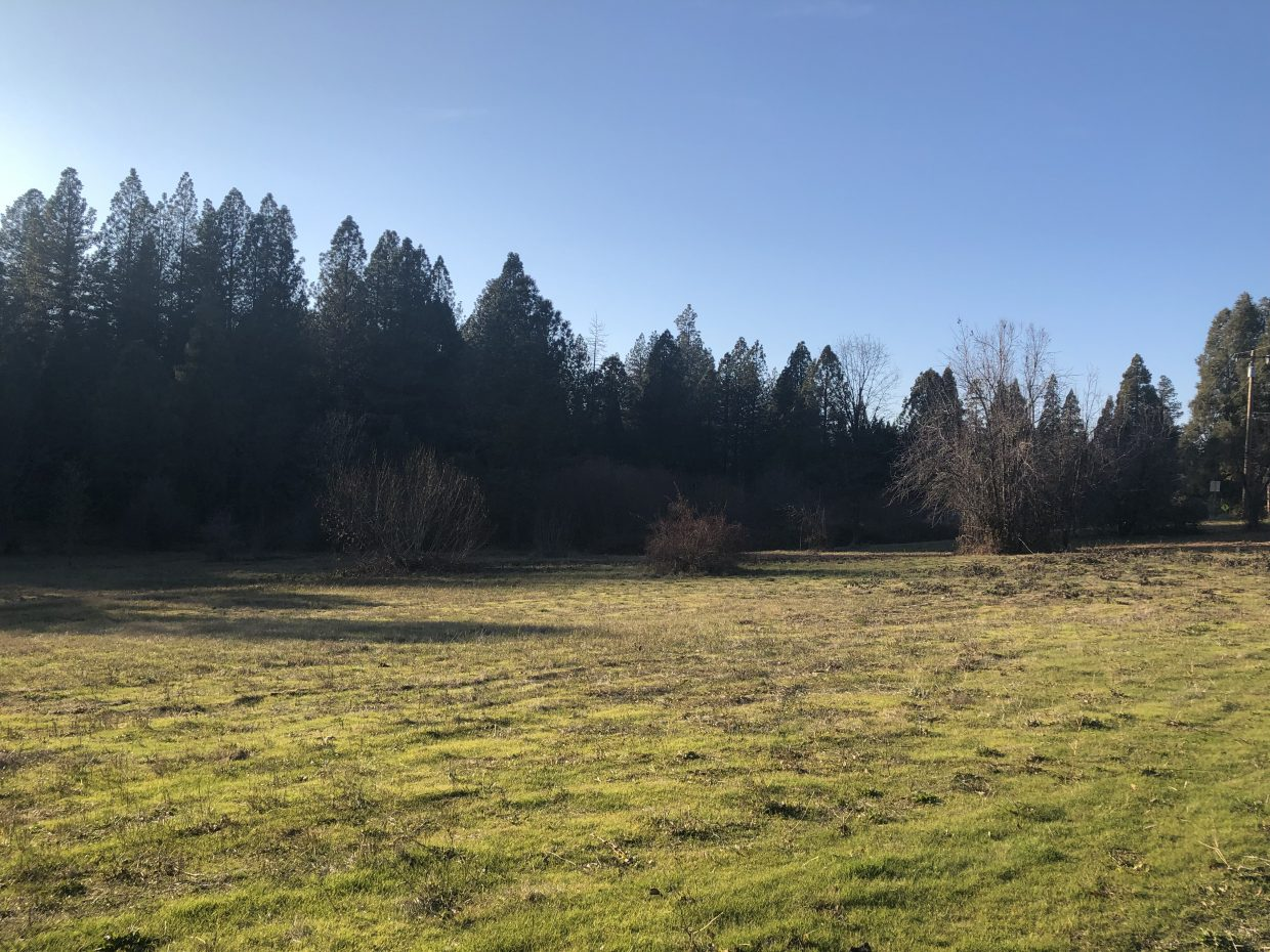 Whiting Meadow in downtown Grass Valley is the location of the new development