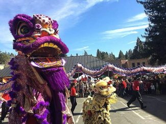 Welcome the year of the boar: Nevada City Chinese Lunar New Year Festival and Parade this weekend