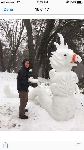 Snow dragon sighted on Meadow Drive!
