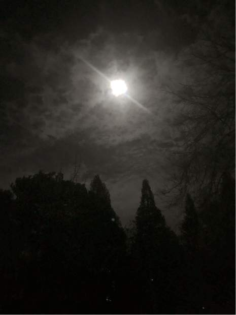 Super Snow Moon from my iPhone on Mill Street in Grass Valley.