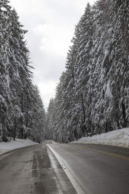 Snow covered the vegetation along Highway 20 Sunday.