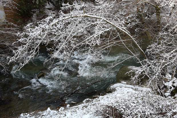 Snowfall covers the banks and trees of Deer Creek through Nevada City Thursday morning.