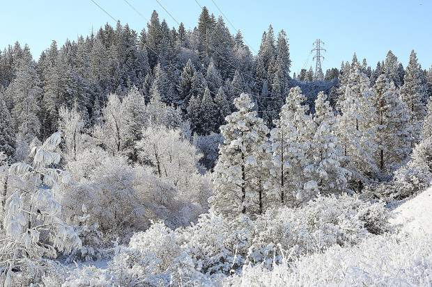 The snow covered hillsides of Grass Valley as visible from Sutton Way Thursday morning.