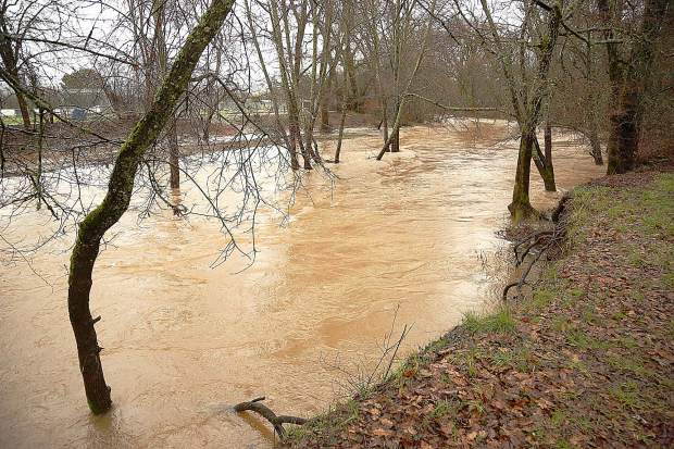 A swollen Squirrel Creek flows swiftly through Penn Valley's Western Gateway Park during Tuesday's rain. An atmospheric river is expected to last through Wednesday meaning for the potential of other flooded creeks and roads.