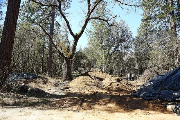 Truckloads of dirt await to be placed along the bike paths being cleared through the wooded oaks of Western Gateway Park near the dog park.