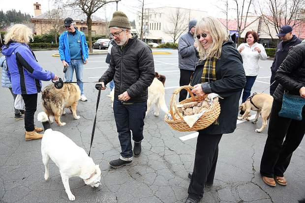 Carol Kinyon disseminates the remaining dog filled pastys following the finale of the Pasty Olympics.