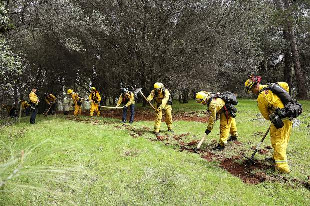 North San Juan, Grass Valley, Truckee, and Cal Fire firefighters work side by side to help cut a fire break line through a meadow during the Lake of the Pines fire drill Sunday.