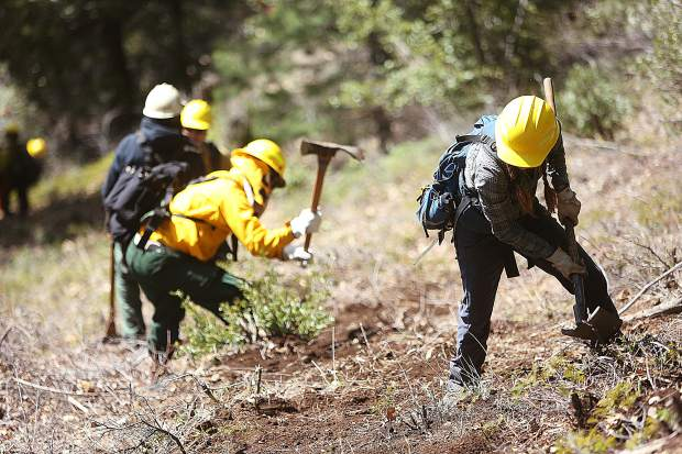 Prospective wildland firefighters work together to clear a fire break line during Wednesday's field training day.