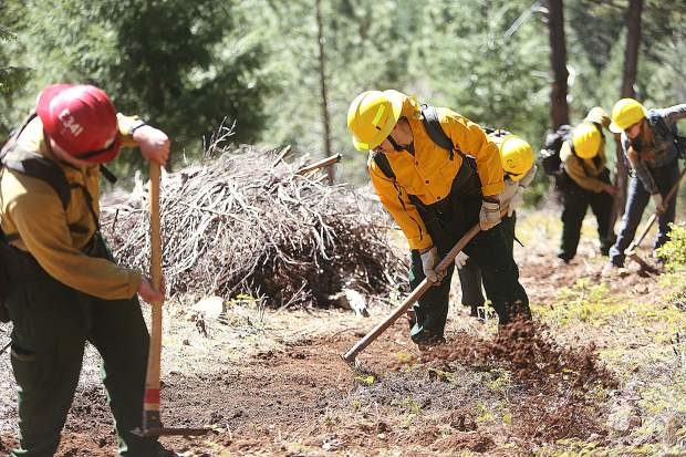 Prospective wildland firefighters work to clear a fire break line during Wednesday's field training day.