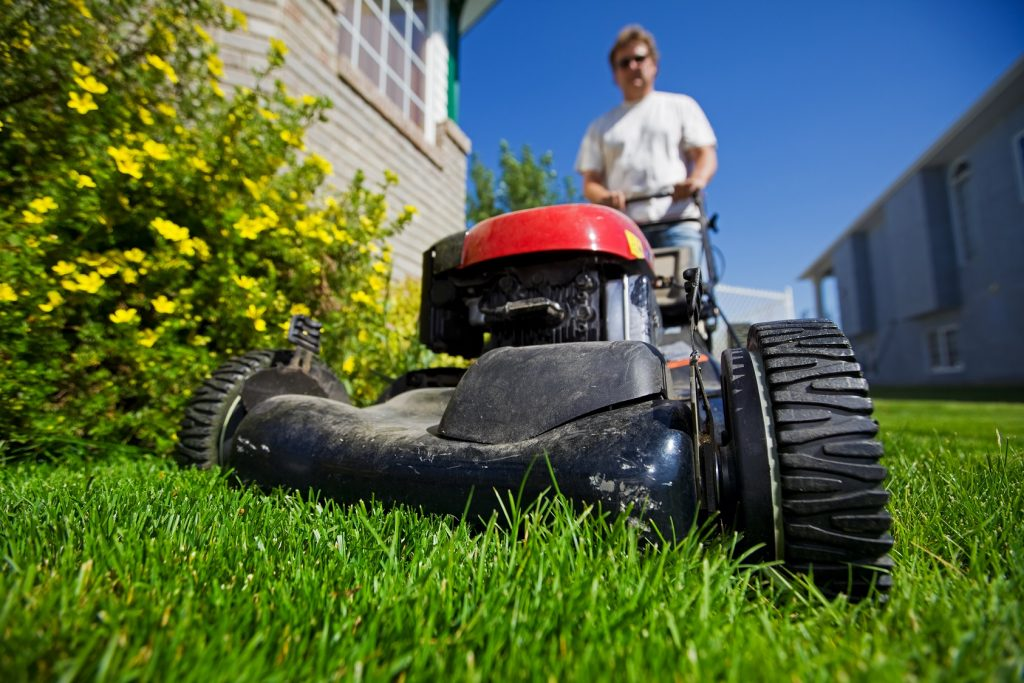 Get your yard and property ready for summer