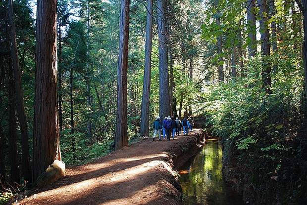 Cascade Canal is among the 30-plus miles of trails built and maintained by Bear Yuba Land Trust.