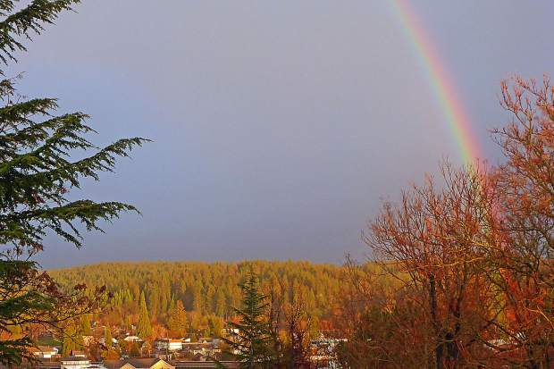 Did someone find a pot of gold in Memorial Park on March 23 about 7 p.m.?
