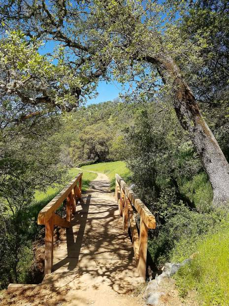 The Buttermilk Bend Trail at South Yuba River State Park in Bridgeport.