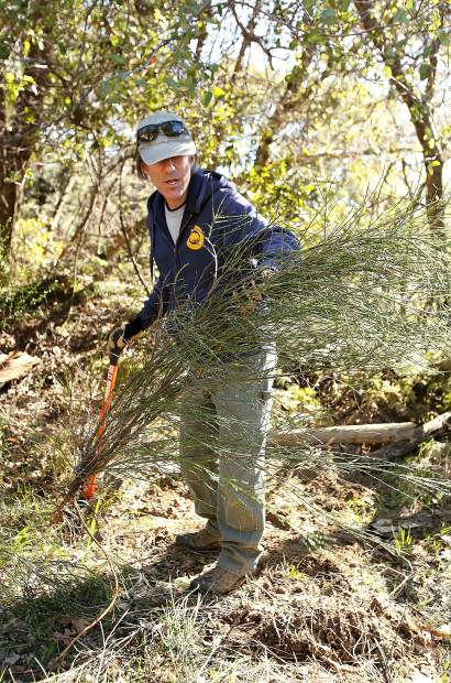 California State Parks Environmental Scientist Dan Lubin demonstrates how to use an Extractigator weed pulling tool to assist in extracting the roots of Scotch broom. SYRCL has a handful of the industrial weed pullers available to loan.
