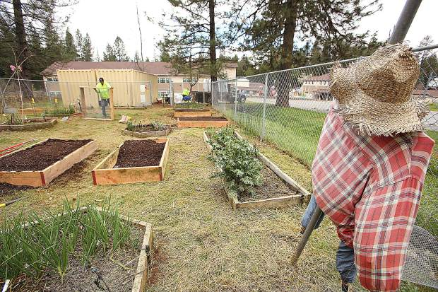 The Union Hill Elementary School garden got a facelift thanks to Vermicrop Organics and Hawthorne Garden Company out of Olivehurst.