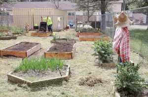 School garden gets a facelift