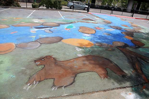 A detail of the Grass Valley Charter School fourth graders' chalk mural shows the different types of animals, including this bear, that once roamed the free-flowing creek bed that now resides under the Gold Miners Inn parking lot in downtown Grass Valley.